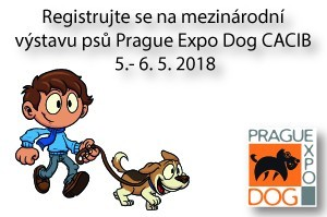 Prague Expo Dog CACIB 2018