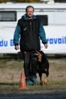 Výsledky - MS Francouzských ovčáků a Flanderských bouvierů č.12