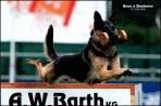 Mistrovství světa FCI ve výkonu psů pracovních plemen 2009