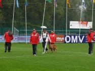 Mistrovství světa FCI ve výkonu psů pracovních plemen 2009 č.11