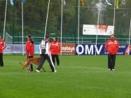 Mistrovství světa FCI ve výkonu psů pracovních plemen 2009 č.12