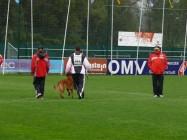 Mistrovství světa FCI ve výkonu psů pracovních plemen 2009 č.13
