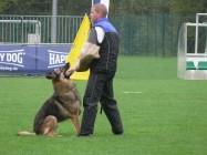 Mistrovství světa FCI ve výkonu psů pracovních plemen 2009 č.20