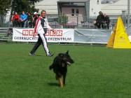 Mistrovství světa FCI ve výkonu psů pracovních plemen 2009 č.23