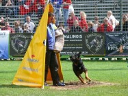 Mistrovství světa FCI ve výkonu psů pracovních plemen 2009 č.24