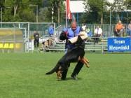 Mistrovství světa FCI ve výkonu psů pracovních plemen 2009 č.30
