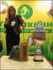 Šampion Šampionů 2007 - XMas Surprise Stříbrné přání