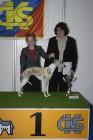 XII. Mezinárodní výstava psů PRAHA 2006