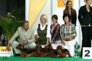 XVII. Mezinárodní výstava psů PRAHA 2009 č.17
