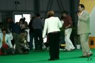 XVII. Mezinárodní výstava psů PRAHA 2009 č.40