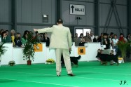 XVII. Mezinárodní výstava psů PRAHA 2009 č.42