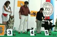 XVII. Mezinárodní výstava psů PRAHA 2009 č.48