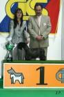 XVII. Mezinárodní výstava psů PRAHA 2009 č.49