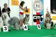 XVII. Mezinárodní výstava psů PRAHA 2009 č.54