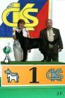XVII. Mezinárodní výstava psů PRAHA 2009 č.55