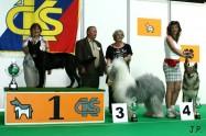 XVII. Mezinárodní výstava psů PRAHA 2009 č.57