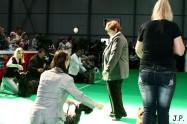 XVII. Mezinárodní výstava psů PRAHA 2009 č.58