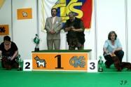 XVII. Mezinárodní výstava psů PRAHA 2009 č.65