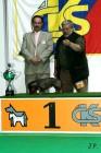 XVII. Mezinárodní výstava psů PRAHA 2009 č.68