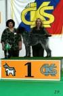 XVII. Mezinárodní výstava psů PRAHA 2009 č.75