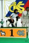 XVII. Mezinárodní výstava psů PRAHA 2009 č.84