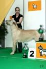 XVII. Mezinárodní výstava psů PRAHA 2009 č.88