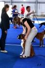 XVII. Mezinárodní výstava psů PRAHA 2009 č.116