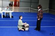 XVII. Mezinárodní výstava psů PRAHA 2009 č.118