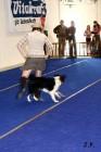 XVII. Mezinárodní výstava psů PRAHA 2009 č.122