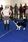 XVII. Mezinárodní výstava psů PRAHA 2009 č.123
