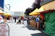 XVII. Mezinárodní výstava psů PRAHA 2009 č.133