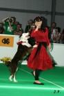 XVII. Mezinárodní výstava psů PRAHA 2009 č.143