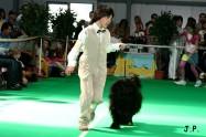 XVII. Mezinárodní výstava psů PRAHA 2009 č.158