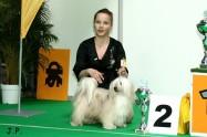 XVII. Mezinárodní výstava psů PRAHA 2009 č.164