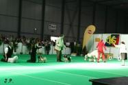XVII. Mezinárodní výstava psů PRAHA 2009 č.168