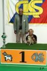 XVII. Mezinárodní výstava psů PRAHA 2009 č.175