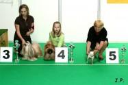 XVII. Mezinárodní výstava psů PRAHA 2009 č.177