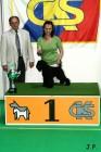 XVII. Mezinárodní výstava psů PRAHA 2009 č.186