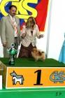 XVII. Mezinárodní výstava psů PRAHA 2009 č.190