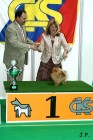 XVII. Mezinárodní výstava psů PRAHA 2009 č.191