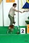 XVII. Mezinárodní výstava psů PRAHA 2009 č.192