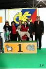 XVII. Mezinárodní výstava psů PRAHA 2009 č.200