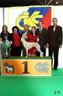 XVII. Mezinárodní výstava psů PRAHA 2009 č.204