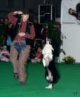 XVIII. Mezinárodní výstava psů PRAHA 2009 fotogalerie č.6
