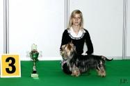 XVIII. Mezinárodní výstava psů PRAHA 2009 fotogalerie č.22