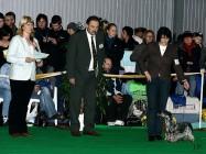 XVIII. Mezinárodní výstava psů PRAHA 2009 fotogalerie č.31