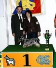 XVIII. Mezinárodní výstava psů PRAHA 2009 fotogalerie č.34