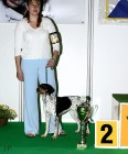 XVIII. Mezinárodní výstava psů PRAHA 2009 fotogalerie č.36