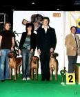 XVIII. Mezinárodní výstava psů PRAHA 2009 fotogalerie č.48