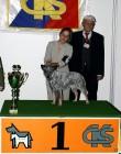 XVIII. Mezinárodní výstava psů PRAHA 2009 fotogalerie č.64